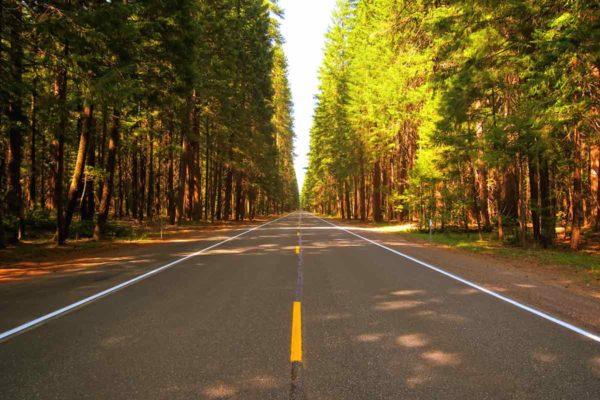 Минтранс хочет больше денег на региональные дороги
